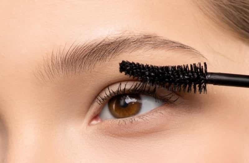how to grow eyelashes back in 2 days