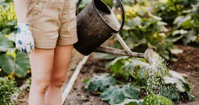 Tricks of Gardening